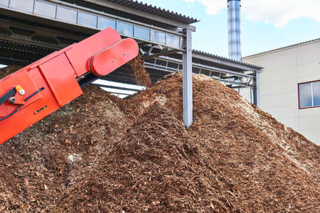 close-up conveyor of an industrial wood shredder producing wood chips from bark Banco de Imagens