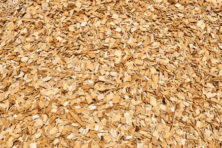 background - pile of wood woodchips, woodworking waste Banco de Imagens