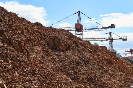 huge pile of shredded wood bark removed from logs in a woodworking factory and cranes in the background