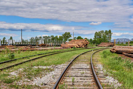 yard of a wood processing factory with logs, mountains of sawdust and railroad tracks
