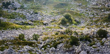 green rocky karst mountain plateau in sunbeams
