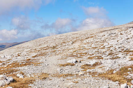 alpine mountain slope covered with dry grass and white stones
