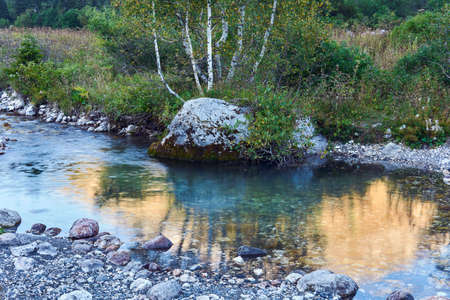 stream pool on a small mountain river with a beautiful rock with birches on the bank Foto de archivo