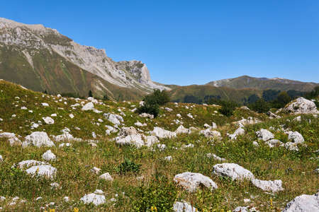 autumn alpine meadow with white stones, behind which the mountain ranges are visible