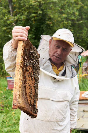 Perm, Russia - August 13, 2020: beekeeper examines the brood frame removed from the hive, holding it in his hands 新聞圖片