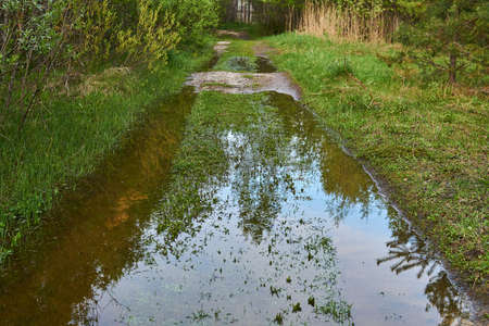 ruts of a dirt road in a river floodplain under water during a spring flood