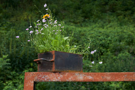 small iron box with wildflowers planted in it stands on a rusty iron structure