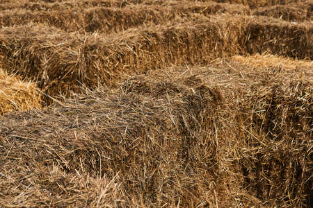 background - a fragment of a maze of stacked bales of hay Reklamní fotografie