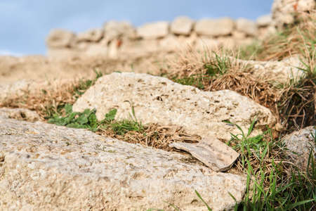 shard of ancient ceramics on a stone among the grass against a background of blurry ancient ruins 스톡 콘텐츠