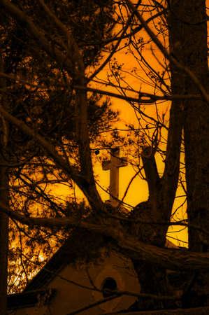 Hermit Terror Reklamní fotografie - 100974351