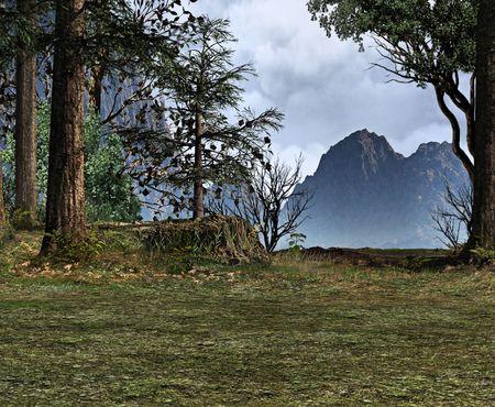木の清算は遠くの山々 を明らかにします。 写真素材