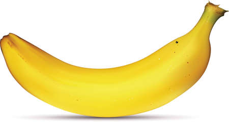 banana: Yellow banana Illustration