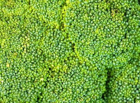 broccolli: Broccoli vegetable