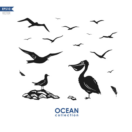 webbed: set of silhouttes of sea birds: seagulls, pelican ant other