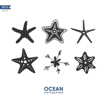 étoiles de mer isolé sur blanc, un ensemble de différentes espèces d'étoiles de mer