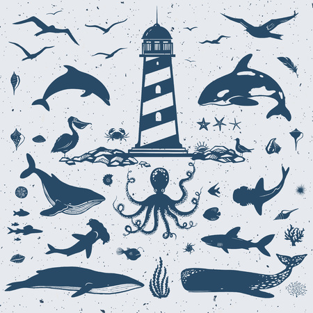 grampus: big set of marine creatures, nautical collection, vector sea animals and birds