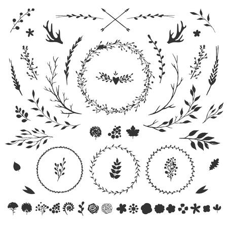 白で隔離素朴な花の要素を持つベクトルのセット: 花、葉、果実、枝、他手描きの装飾的な要素