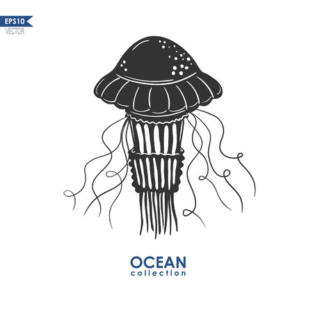 medusa: vector jellyfish silhouette, illustration of medusa isolated on white, black and white illustration