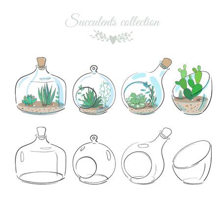 ガラスの花瓶や瓶、背景花イラストで多肉植物と花の装飾的な組成のセット