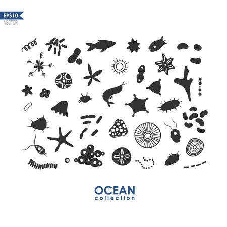 set of small sea creatures and microbes, oceanic plankton isolated on white, vector illustration of sea krill Illustration