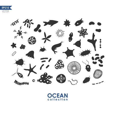 plancton: un conjunto de pequeñas criaturas marinas y los microbios, el plancton oceánico aislado en blanco ilustración, vector de krill mar