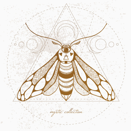 mystic: vintage butterfly, vector illustration vector hand drawn moth with ornamental wings and mystic signs