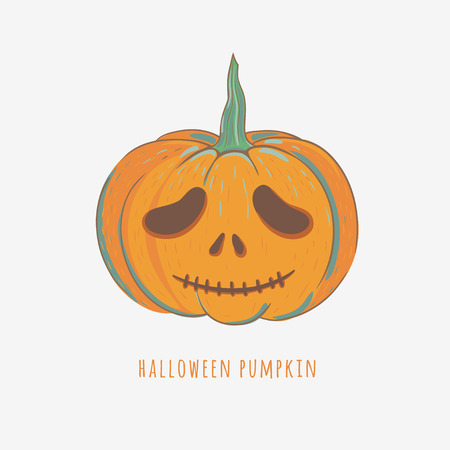 cute halloween pumpkin isolated on white, hand drawn vector illustration