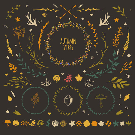 coronal: big set with rustic floral elements, vector flowers, leaves, wreaths, berries, autumn collection of decorative floral vectors