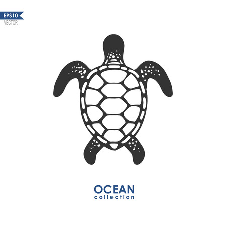 oceanic: turtle isolated on white, vector illustration, oceanic turtle silhouette Illustration