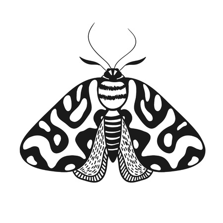 black and white moth illustration isolated on white, vector illustration with butterfly