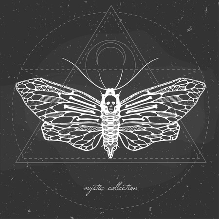 sullen: vector illustration with butterfly on a chalkboard, mystic illustration with dead head moth