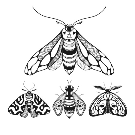 Beautiful butterflies, vector illustration, mystical butterflies with decorative ornamental wings.