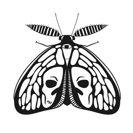 sullen: black and white mystical moth with skull on wings, vector illustration of a butterfly isolated on white Illustration