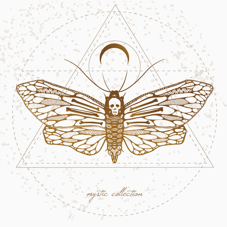 sullen: vintage style illustration with deads head butterfly, mystic illustration with beautiful sullen moth Illustration