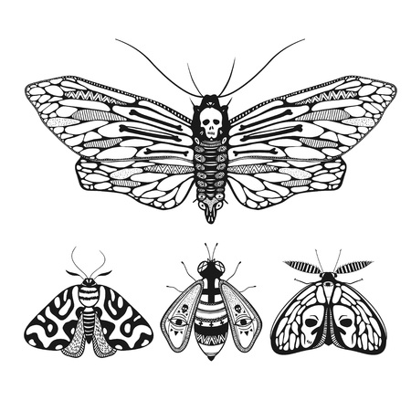Vector illustration with mystic ornamental butterflies isolated on white. Deaths head moth illustration. Ilustração