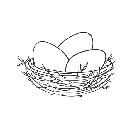 Vector linear illustration with eggs in the nest isolated on white. Vectores