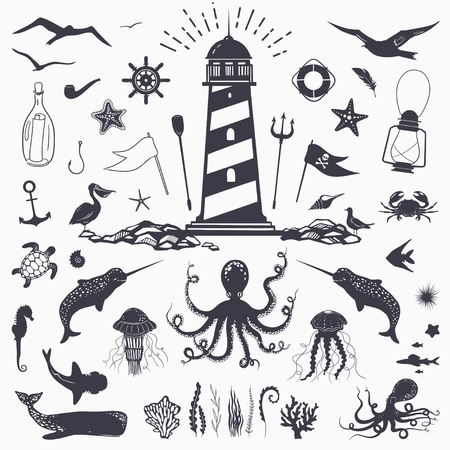 Big set of marine animals: cachalot, shark, octopus, jellyfish, starfish, seahorse, crab, seagulls isolated on white vector nautical illustration Çizim