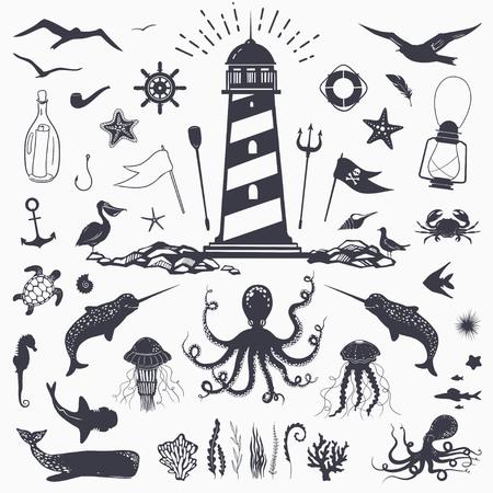 Big set of marine animals: cachalot, shark, octopus, jellyfish, starfish, seahorse, crab, seagulls isolated on white vector nautical illustration Illustration