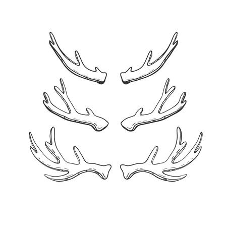 白で隔離、手描きの鹿やヘラジカの角のセット。ベクトル自然スケッチ。