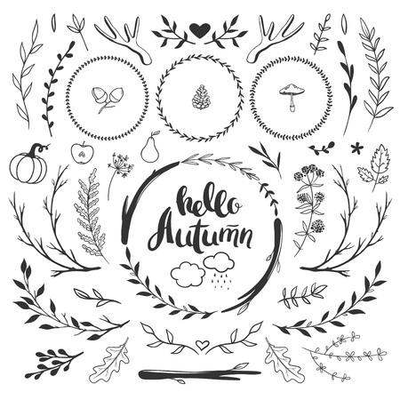 秋の素朴な花の落書きを設定