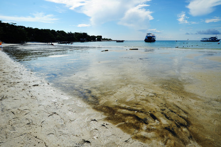 Oil stains on the beach Standard-Bild
