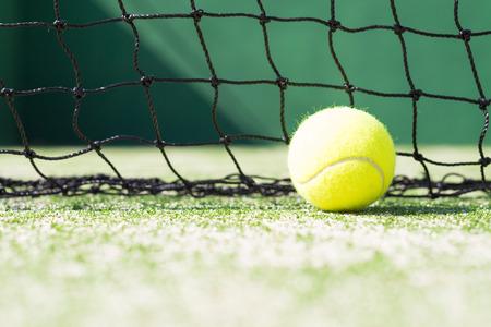 Tennis Ball in the Sun