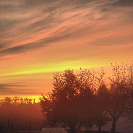 winter sunrise: Winter sunrise - Germany Stock Photo