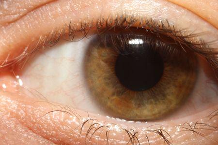green eye: Green eye Stock Photo