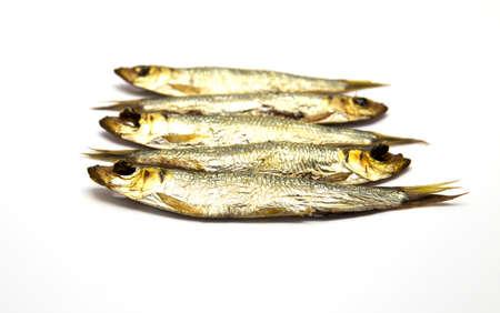 prepared fish: Several smoked European Sprats Sprattus sprattus on white isolated background Stock Photo