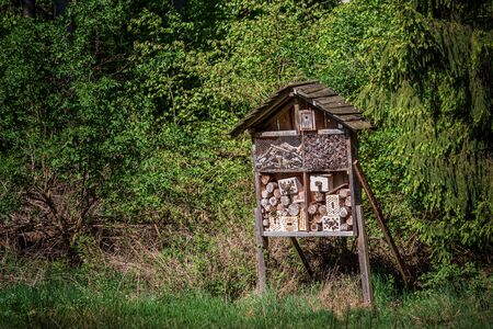 An insect hotel on a forest clearing. Should provide insects with a shelter