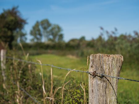Old wicker fence post, wood pile with tensioned barbed wire.
