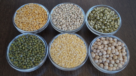 Types of Foodgrains can be used by nutrition expert Banque d'images