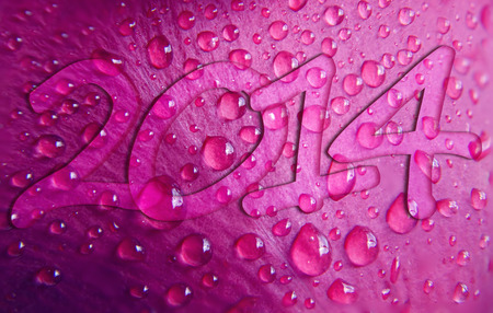 happy new year 2014 on beautiful drops of water rose petal background photo