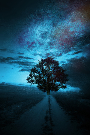 moksha: Big magical tree on the path to milkyway or galaxy where lots of stars are in the sky